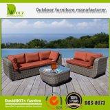 Conjunto seccional del sofá de Outdor de los muebles para cualquier estación del patio
