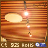 Panneau en bois composé en plastique en bois d'intérieur de décoration de plafond de surface plane