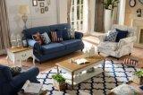 Sofá moderno com tela para a mobília do sofá da sala de visitas (3+1)
