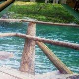 Qualitäts-klare Grafik-schönes Landschaftsvinyltapeten-Digital-Drucken