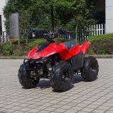 Fabriqué en Chine moins cher 4 Wheeler Buggy 50cc Kids ATV (A05)