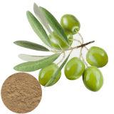 Het Uittreksel van het Blad van de olijf