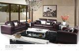 Sofà di Moder con il sofà del cuoio genuino per la mobilia del salone