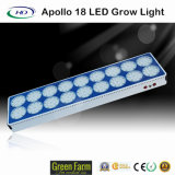 Popular Apollo 18 LED Grow Light para jardinagem em plantas de interior
