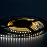 De calidad superior 2835 120leds / M LED Strip con patatas fritas Epistar