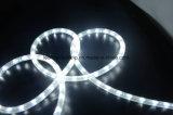 IP65 Y2 refrescan la luz blanca de la cuerda del LED con precio competitivo