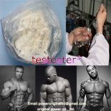 Top-Level-Bodybuilding Hormone Powder Testostero Steroid Basis