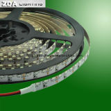 24V el 156LEDs/M 3000k calientan la luz blanca de la cinta de la luz pilota LED