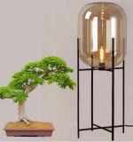 De Buitensporige Staand lamp van Decotative van de Staand lamp van de Vorm van het glas voor het Licht van de Vloer van de Woonkamer