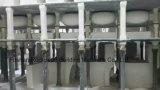 Toilette monopièce CE-T218 de Siphonic