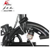 36V 250W Frente / disco de freno trasero plegable Estilo E-Bici (JSL039D-4)