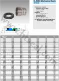 Уплотнения Mechaical колцеобразного уплотнения (BT42D)