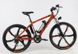 26インチの道の移動性の電気自転車