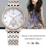 Het Ontwerp van de manier Dame Steel Watch Horloge 71125 van de Dames van het Kristal van Dame Wristwatch Heet Verkoop