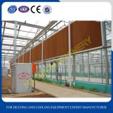Equipamentos agrícolas Wet Curtain Cooling Pad for Green House