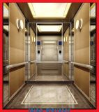 Certified Passenger Elevator Lift with En81 Standard Xr - P48