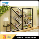 Home Furniture Steel Wine Display Rack e Bookshlef