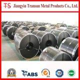 Striscia dell'acciaio inossidabile (0.3*6)