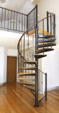 Escalera espiral de roble de la pisada interior de madera con el pasamano del acero inoxidable
