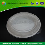 De plastic Doos van de Verpakking van het Voedsel