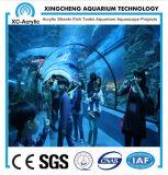 Proyecto de acrílico material de acrílico claro modificado para requisitos particulares del mundo del mar