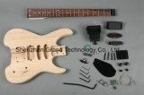 Двойная фиксируя гитара Tremolo DIY электрическая