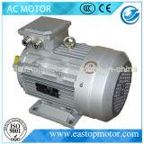 외부 단말기를 가진 발전소를 위한 Motor 3HP Ms