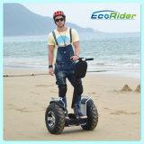 """fora do """"trotinette"""" elétrico da mobilidade da roda da estrada 2 para a venda, """"trotinette"""" elétrico do balanço do auto"""