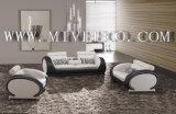 Sofa en cuir (TB-816#)