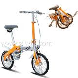 Vélo/bicyclette se pliants (WTB111401)