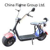 motorino elettrico di 1000W Harley con la sospensione di F/R, 2 sedi