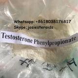 Phenyの同化ステロイドホルモンのホルモンのテストステロンのPhenylpropionateの白の粉をテストしなさい
