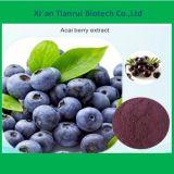 製造業者の供給のAcaiの果実のエキスの粉