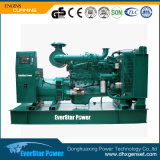 500kw Diesel Generator Set Power da Cummins per Sale.