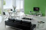 現代デザイン居間の家具TVの立場Dg005