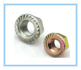 M3-M30 von Color Zinc Plated Nuts mit Carbon Steel