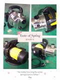 (SDP600-10S) Selbstansaugende Garten-Strahlen-Wasser-Pumpe mit dem Cer ETL genehmigt