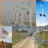 100W Wind Generator, Wind Hybrid Controller для Gardon Light