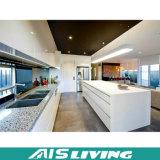 Mobília dos gabinetes de cozinha da laca de Matt da galeria (AIS-K444)