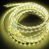 높은 CRI 60LEDs/M SMD2835 유연한 LED 지구 빛 12V, 높은 루멘 22-28lm를 가진 24V