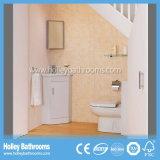 El MDF vendedor caliente suela libremente la vanidad derecha del cuarto de baño (BF142V)