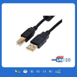 Female에 Color 까만 USB Extension Cable Male
