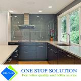 Armadi da cucina blu popolari della mobilia modulare di colore (ZY 1033)