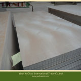 Carburador Fsc Certificate White Birch Plywood para Furniture