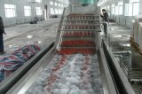 Cortador manual de legumes - Equipamento de processamento de vegetais e frutas