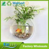 15cm 직경 공간 소형 아크릴 둥근 벽 마운트 물고기 사발 탱크 꽃 플랜트 화병
