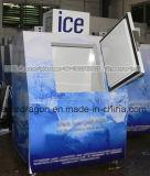 Escaninho de armazenamento do gelo para o gelo ensacado