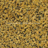 Chrysantheme Yellow Granite Kitchen Countertop für Kitchen/Vanity Top