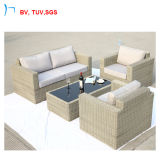 Presidenza del patio della mobilia del rattan di TUV ed insieme esterni del sofà del giardino