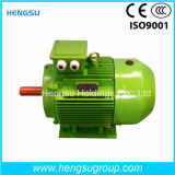 Ye3 4kw Three-Phase AsynchronousのリスCage Cast Iron Induction Electric Motor